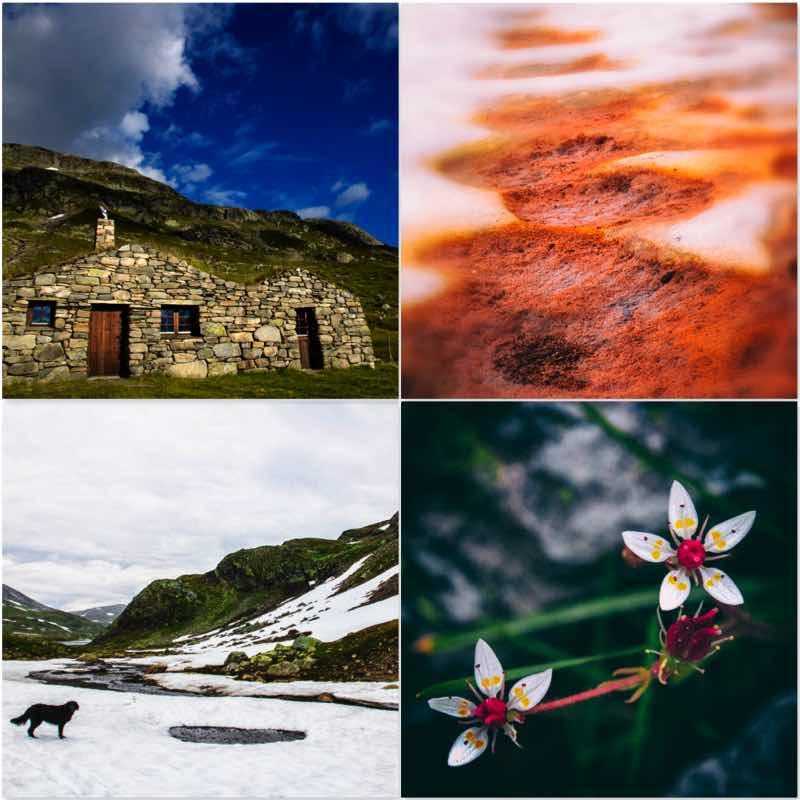 collage bij blog enkel en bergen